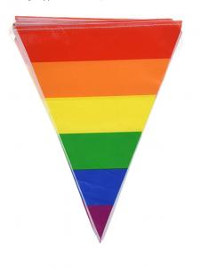 LGBTQ Bridge - Great Bridge Links