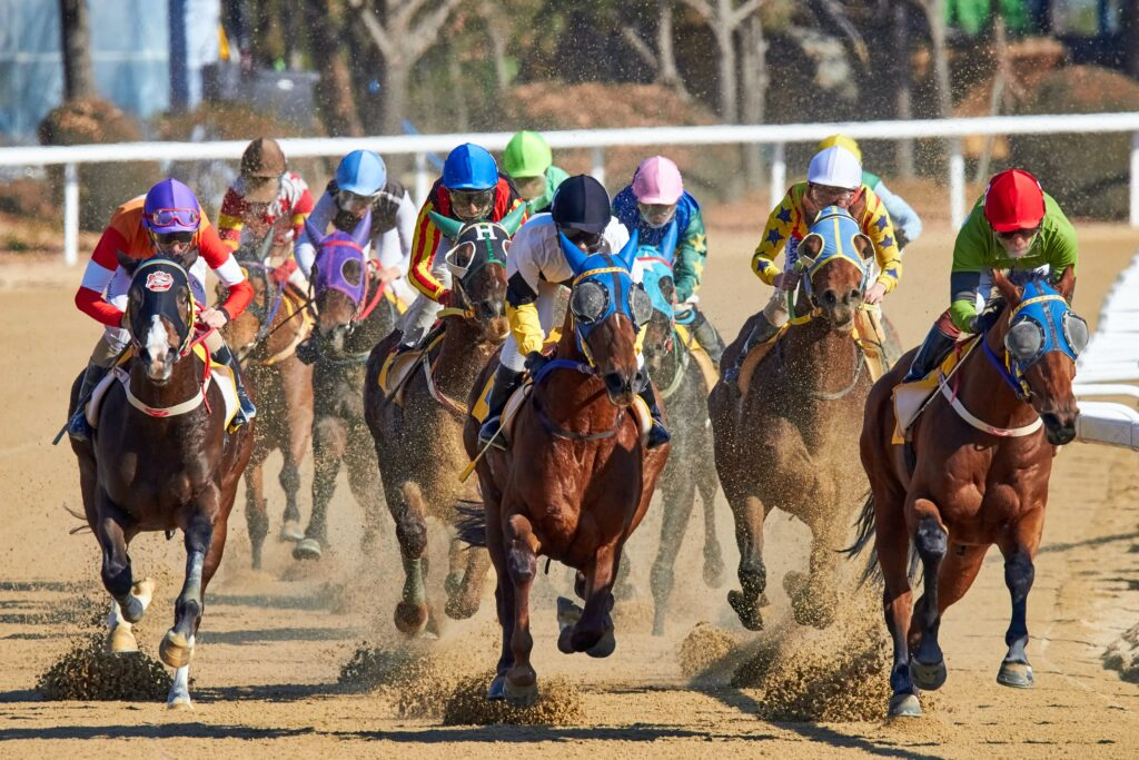 What Makes Summer Horse Racing Special?